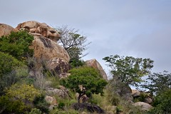 Parc Kruger (ClaudeVoyage) Tags: africa park preview kruger lanscapes