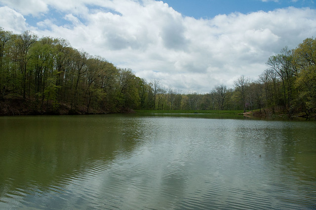 Morgan-Monroe State Forest - Bryant Creek Lake - April 2013