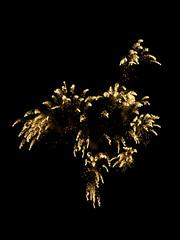 DJT_8484 (David J. Thomas) Tags: summer fireworks arkansas independenceday pyrotechnics batesville
