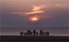 Sunrise Over Stonehenge (Chris Beard - Images) Tags: uk summer england mist sunrise landscape dawn july stonehenge wiltshire mists