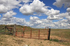 what a pretty sky (fly flipper) Tags: snakes rocklake ticks easternwashington escureranch washingtonscablands