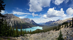 peyto lake (Sean Vallely) Tags: park canada club rockies canadian outings sierra national banff peyto