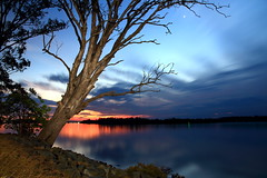 """Silent Sentinel"" (TonyinAus) Tags: trees lightpainting weather canon sunsets australia rivers newsouthwales"