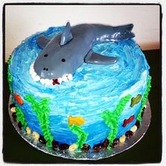Shark Cake by Elicia and Vicki, Santa Cruz,CA, www.birthdaycakes4free.com