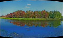 Mississippi River reflection (chasdobie) Tags: autumn autostitch panorama ontario canada reflection water nikon scenery scenic mississippiriver hdr lanarkcounty dalhousielake cans2s