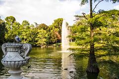 En el lago (lvaro Hurtado) Tags: madrid park parque trees espaa naturaleza lake bird nature water fountain lago spain agua rboles fuente retiro pjaro d3100