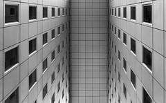 Windows (AO-photos) Tags: windows blackandwhite paris building architecture silver noiretblanc sony perspective ladéfense efex rx100