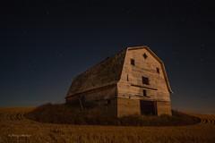 This Old Barn (Keeperofthezoo) Tags: sky canada abandoned field night stars landscape nightscape farm farmland alberta crops prairie agriculture agricultural abandonedbuilding abandonedbarn