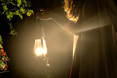 IMG_97141 (megscapturedtreasures) Tags: girl fairytale night forest woods dream cap fantasy lantern