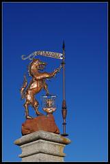 Loup du Gvaudan (Daenelyn) Tags: france bronze wolf loup k5 languedocroussillon lozre aumontaubrac gvaudan smcpdfa100mmf28 pentaxk5