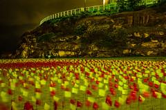Red Centre - Carl Billingsley (USA) (nikabuz) Tags: longexposure nightphotography lightpainting bondi artwork sydney australia nsw sculpturesbythesea