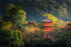 Kyoto (: : T O N I : :) Tags: travel autumn japan fuji getty
