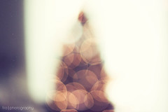 ...a christmas dream (fro*) Tags: christmas bokeh christmastree christmaslights dreamy