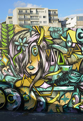 Graffiti Art Auckland NZ (Peter Jennings 18 Million+ views) Tags: street new art graffiti stencil paint cut banksy spray peter auckland zealand artists nz component tagging collective jennings