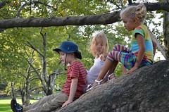 Kids On A Boulder (Joe Shlabotnik) Tags: nyc newyorkcity rock centralpark manhattan violet boulder sheepmeadow willh 2013 september2013