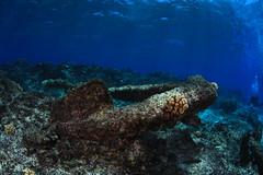 Anglų lietuvių žodynas. Žodis underwater archeology reiškia povandeninė archeologija lietuviškai.