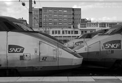TGV Sud-Est 42, 89 & 14 (Oliver_A) Tags: paris de se gare 14 42 rame pse nord tgv sud est sncf 89