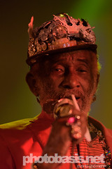 lee-scratch-perry-dub-cahmpions-festival-2015-WUK-29.jpg