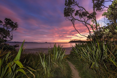 Emergence (Nick Twyford) Tags: longexposure newzealand seascape lightpainting clouds sunrise wideangle nz coromandel whitianga earlymorninglight cooksbeach nofilters singleimage colourimage lonelybay nikond800 nikkor160350mmf40 solmetageotaggerpro2