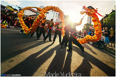 Orange Dragon (Bali Freelance Photographer) Tags: life people bali nature beauty canon indonesia eos photo foto stock culture daily cultural alam budaya balinese culturalevent myudistira madeyudistira myudistiraphotography