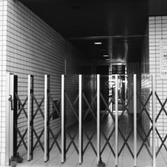 160430_ZenzaBronicaS2_004 (Matsui Hiroyuki) Tags: fujifilmneopan100acros zenzabronicas2 nikonnikkorp75mmf28 epsongtx8203200dpi