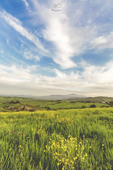 Travelling Clouds HD (mattia.camozzi.photography) Tags: flowers sky italy green vertical clouds canon landscape italia val siena toscana orcia quirico