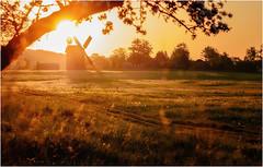Sunrise With Windmill (delpax) Tags: mill mhle fuji fujinon 290 xt1 delpax