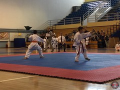 stefanou_15_5_2016_knockdown_167
