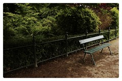 le banc (Nicolas Fourny photographie) Tags: trees paris france nature canon bench solitude loneliness sigma arbres 18200 banc boisdeboulogne 600d