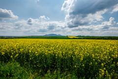 Fertile fields of Plava (The Adventurous Eye) Tags: landscape reserve biosphere unesco area protected plava oblast chko krajinn chrnn