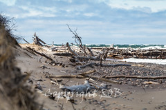 Michigan_North-0737.jpg (CitizenOfSeoul) Tags: usa beach sand michigan may greatlakes shore northamerica upperpeninsula lakesuperior whitefishpoint 2016