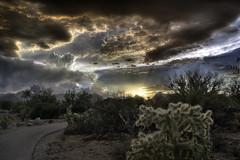 Tucson Mountain Sunset (L Geoffroy) Tags: tucsonmountainpark arizona cactus clouds desert saguaro tucson sky southwest