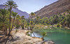 Desert Oasis (Sarmu) Tags: wallpaper lake nature landscape highresolution view desert outdoor widescreen 1600 oasis highdefinition resolution 1200 hd wallpapers om oman hdr 1920 ws 1080 1050 720p 1080p wadibanikhalid 2015 1680 720 عمان digitalblending 2560 sarmu ashsharqiyah ashsharqiyahnorthgovernorate