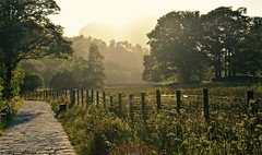The Path (Nige H (Thanks for 5m views)) Tags: trees sunlight nature fence landscape evening twilight path cumbria