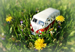 Lost in the dandelion kingdom. (Through Serena's Lens) Tags: red white green grass yellow volkswagen toy bright sunny dandelion van