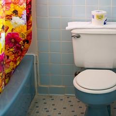 Munger Moss Bathroom (Austin Hudson) Tags: classic vintage bathroom route66 colorful retro throwback mungermoss