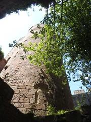 Chteau de Kintzheim - Volerie des Aigles (routedeschateauxdalsace) Tags: alsace chteau kintzheim