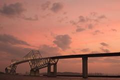 DSC04468 (Zengame) Tags: bridge japan architecture night zeiss tokyo sony illumination landmark illuminated cc jp creativecommons    distagon     wakasu   a6300  tokyogatebridge   distagontfe35mmf14za fe35mmf14 6300 distagonfe35mmf14