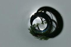 the bubble in the butt.......... (Suzie Noble) Tags: macro bubbles waterbutt strathglass macromondays struy