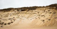 newcomb dunes (malenajax) Tags: sky beach water sand waves capecod