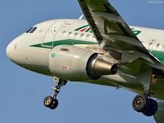 AlItalia (IvanB PG) Tags: plane serbia airbus belgrade beograd nikolatesla srbija planespotting bukvicivan