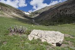 Spot Mountain Drainage (GlacierNPS) Tags: glaciernationalpark montana twomedicine nature outdoors nps nationalparks spring
