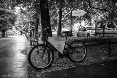 In the magic garden (Theunis Viljoen LRPS) Tags: bicycle path poland krakow planty magicgarden cudawianki