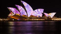 _MG_4247.jpg (Tibor Kovacs) Tags: colors night sydney vivid australia operahouse sydneyoperahouse projections vividatoperahouse