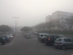 Cayetano Roldan, Niebla. (Mange) Tags: sanfernando iphone callejera