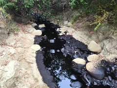 Oil Pool (Greenpeace USA 2016) Tags: oilspill oilindustry oilpollution contamination oil pipeline oilspills leaks