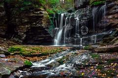 Upper Falls of Elakala (kenneth alan lewis) Tags: park autumn fall nature water forest waterfall moss scenic foliage westvirginia algae tuckercounty blackwaterstatepark