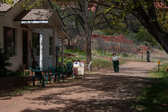 Palatki Heritage Site (Coconino National Forest) Tags: arizona forest outdoors unitedstates sedona nativeamerican redrocks verdevalley coconinonationalforest forestservice usfs sinagua heritagesite redrockrangerdistrict