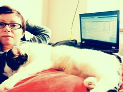 Ninety five. Stan helping me work.. (sarahjanequinn) Tags: home me cat work sleep stan iphone project365 uploaded:by=flickrmobile flickriosapp:filter=nofilter