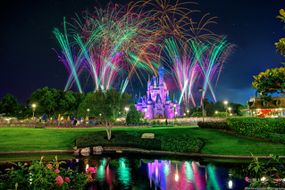 Cinderella Castle Reflects on Wishes
